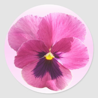 Stickers - Dark Pink Pansy