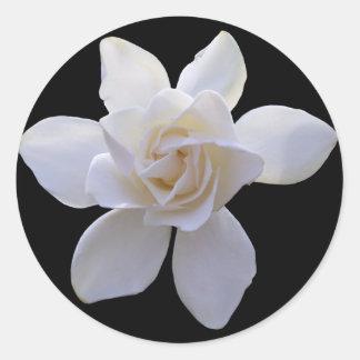Stickers - Gardenia on Black