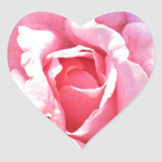 Stickers Heart Pink Rose