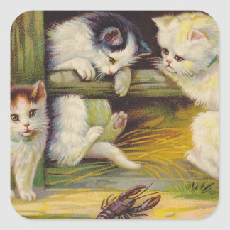 STICKERS Rural Farm Curious Kittens Cat Square