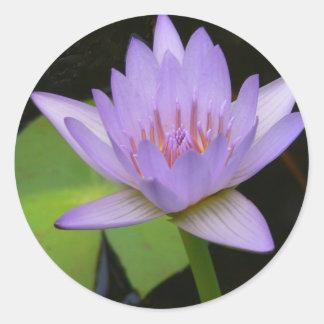 Stickers,  Soft Lavender Water Lily Round Sticker