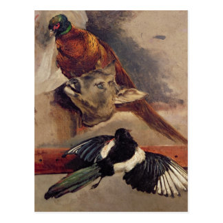 Still Life of Game, c.1812-16 Postcard