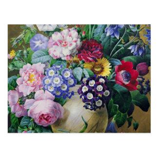 Still Life of Summer Flowers Postcards