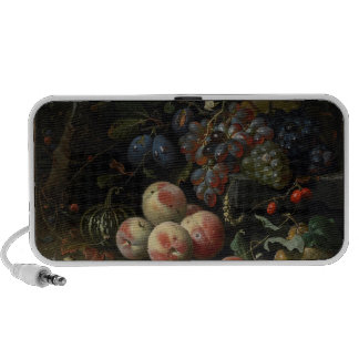 Still Life with Fruit, Foliage and Insects, c.1669 Speaker