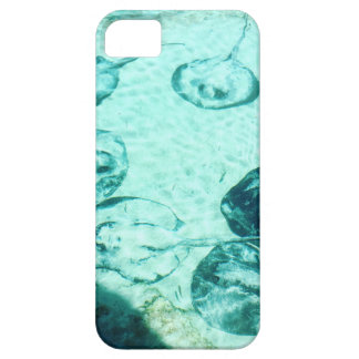 Sting rays in Xcaret - Mexico iPhone 5 Cover