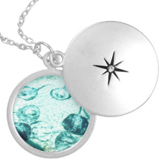 Sting rays in Xcaret - Mexico Locket Necklace