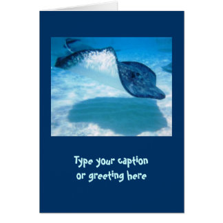 Stingray Note Cards