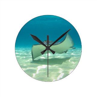 Stingray Round Clock