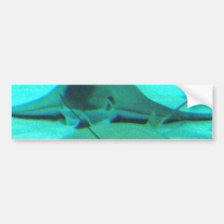 Stingrays on Ocean Floor Bumper Sticker