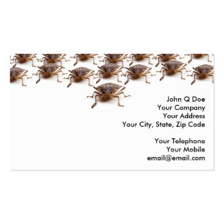 Stink or Shield bug for pest exterminator Business Card Templates