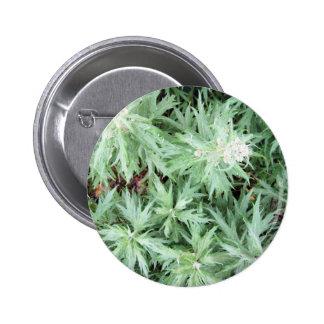 stink weed 6 cm round badge