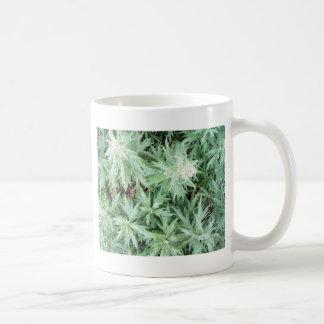 stink weed coffee mugs