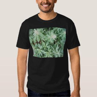 stink weed tee shirt