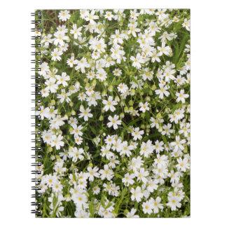 Stitchwort Stellaria Wild Flowers Spiral Notebook
