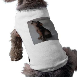 stock photos 087Wolf Shirt