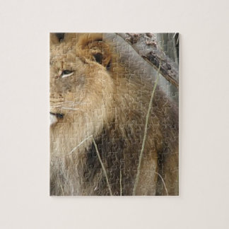 Stoic Lion Looking Off into the Distance Jigsaw Puzzle