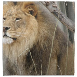 Stoic Lion Looking Off into the Distance Napkin