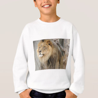 Stoic Lion Looking Off into the Distance Sweatshirt