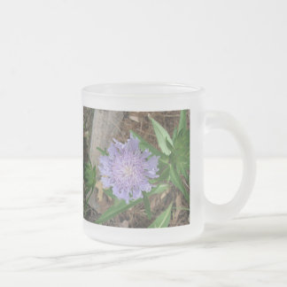 Stokes Aster, Stokesia laevis Frosted Glass Coffee Mug