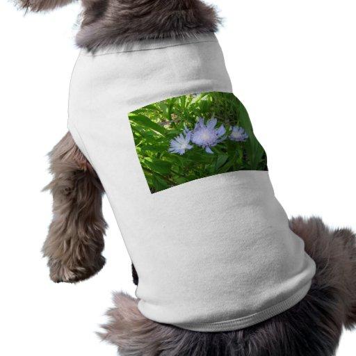 Stokesia, Stokes Aster Pet Tshirt