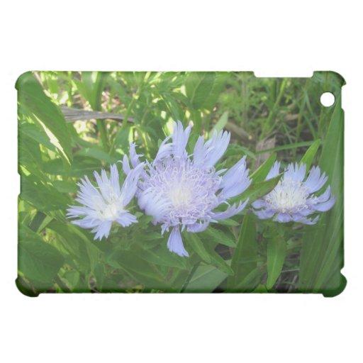 Stokesia, Stokes Aster iPad Mini Cover