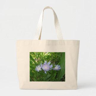 Stokesia, Stokes Aster Bag