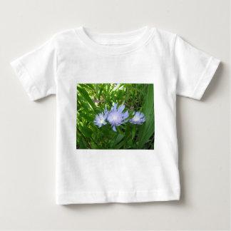 Stokesia, Stokes Aster Tshirts