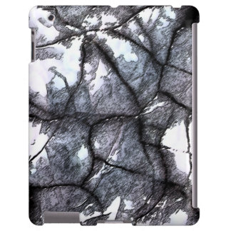 Stone Case