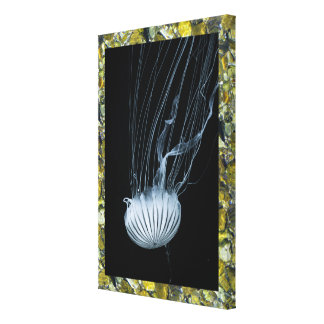 Stone Design Wrapped Canvas with jellyfish