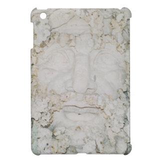 Stone-Face3 Case For The iPad Mini