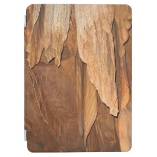 Stone Fold Elegance Case for Earth Lovers iPad Air Cover