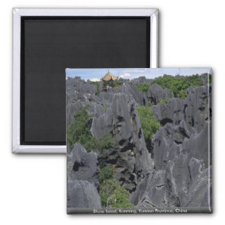 Stone forest, Kunming, Yunnan Province, China Square Magnet