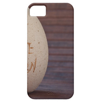 Stone iPhone 5 Cases