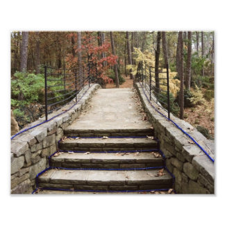 Stone Pathway Photo Print