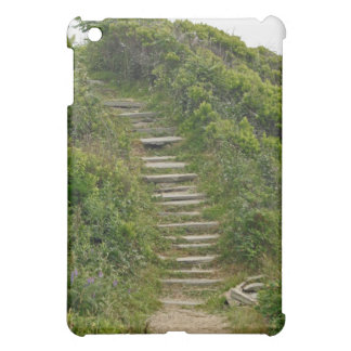 Stone Stairs iPad Case