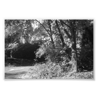 "Stone Tunnel Inwood Park, NYC 6"" x 4"" (Satin) Photograph"