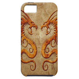 Stone Twin Dragons iPhone 5 Covers