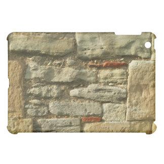 Stone Wall Image. iPad Mini Covers