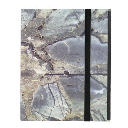 Stone wall iPad case