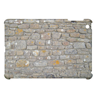 Stone Wall With Holes And Some Lichens Case For The iPad Mini