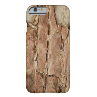 stonemason barely there iPhone 6 case