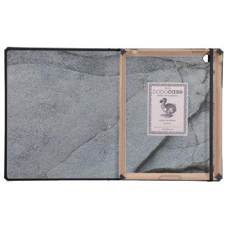 Stones iPad Cases