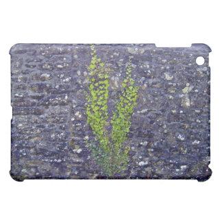 Stonewall with climbing plants iPad mini covers