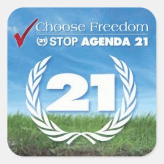 Stop Agenda 21 Square Sticker