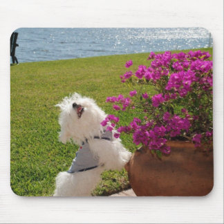 Stop and smell the flowers mouse pad