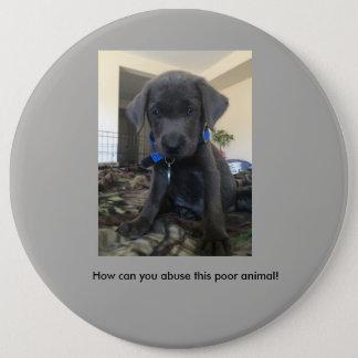 Stop animal abuse pin