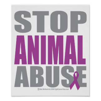 how to stop animal abuse