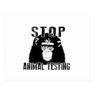 Stop Animal Testing - Chimpanzee Postcard
