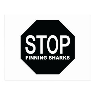 Stop Finning Sharks Sign Postcard