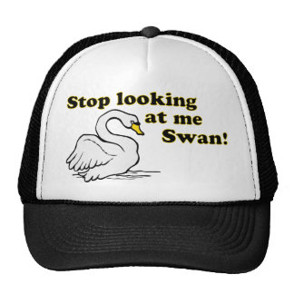 Stop looking at me swan hats